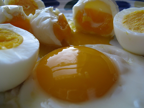 http://to55er.files.wordpress.com/2009/02/perfect_eggs_1.jpg
